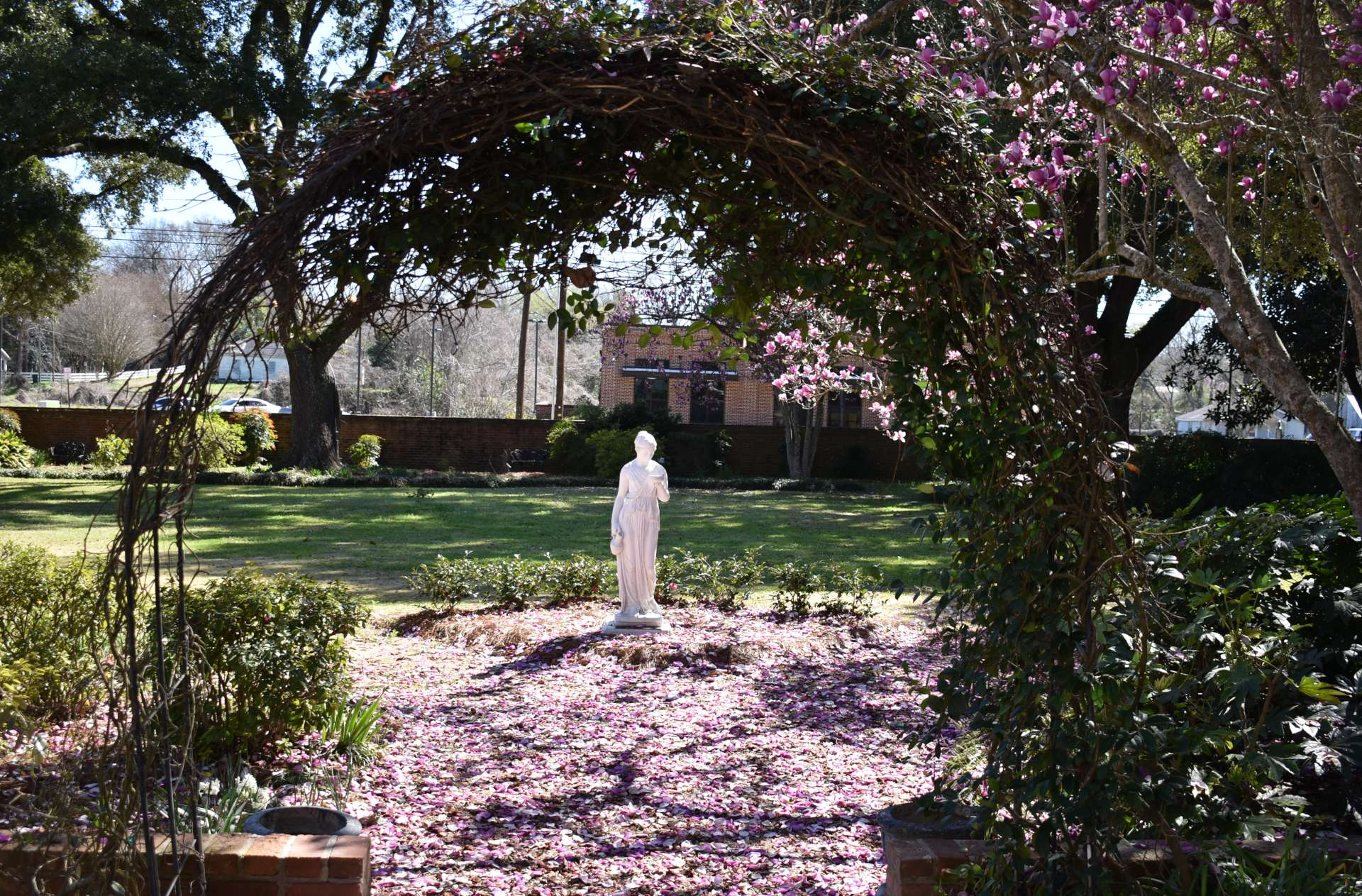 Female statue in garden through arch, magnolia petals on the ground