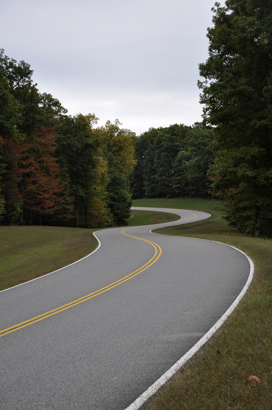 Driving the Natchez Trace Parkway
